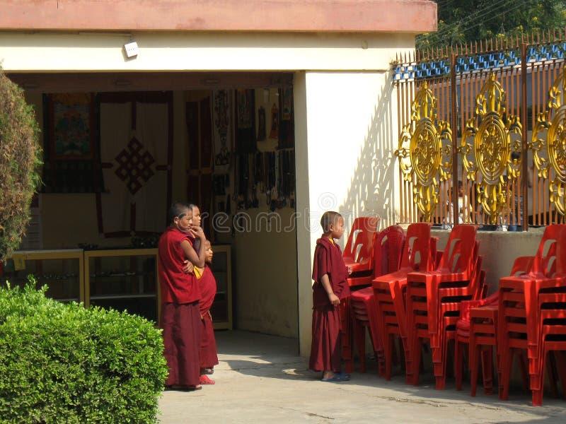 Молодые монахи на монастыре Bodh Gaya Индии Tharjay Chokhorling карм тибетском стоковая фотография rf