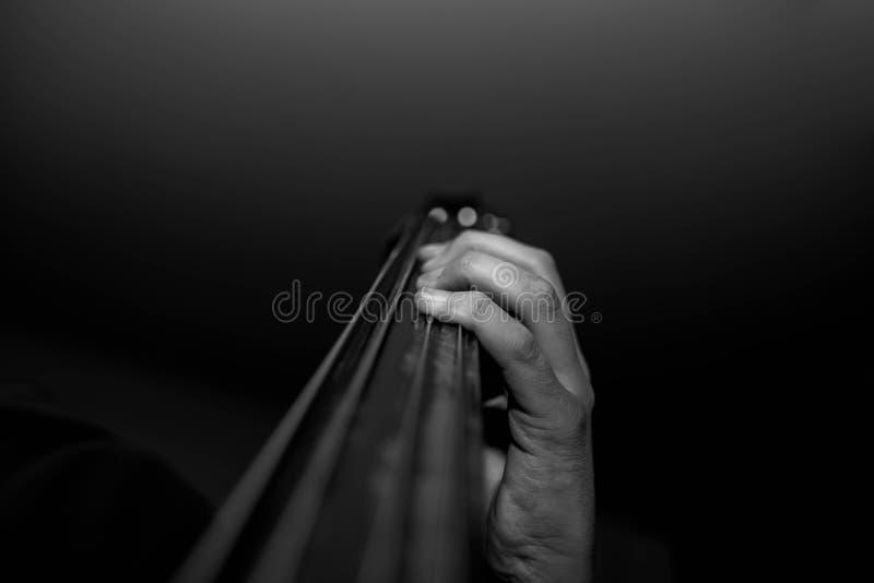 Молодые музыканты вручают на двойном басе стоковое изображение rf