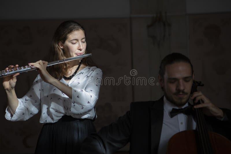 Молодые музыканты дуэта симфонического оркестра стоковое фото