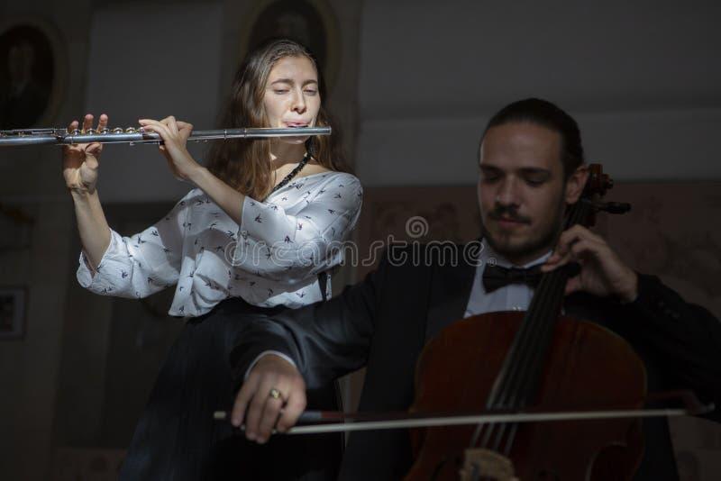 Молодые музыканты дуэта симфонического оркестра стоковые изображения rf