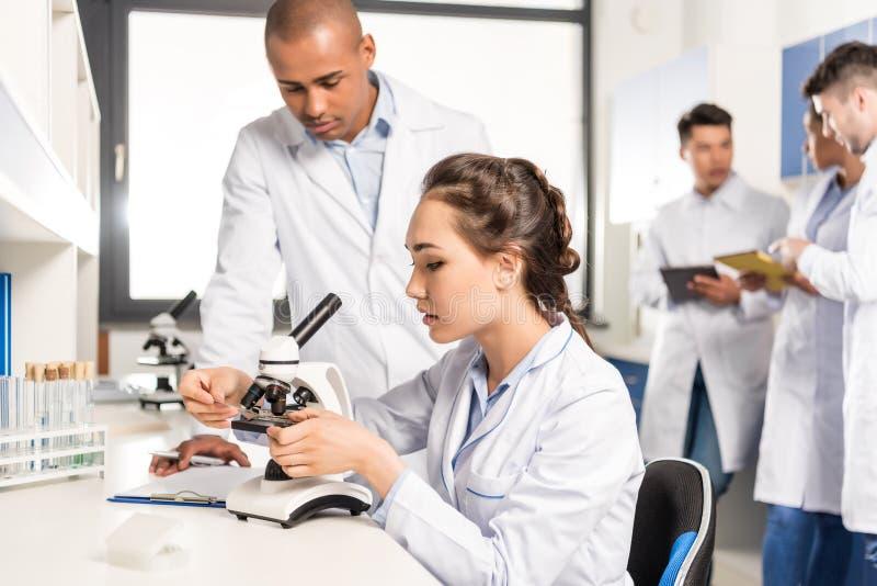 Молодые профессиональные химики работая с микроскопом совместно стоковые фото