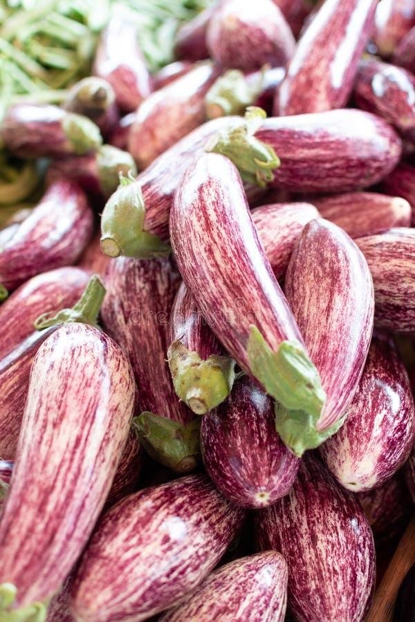 Молодые свежие сырцовые овощи баклажанов на рынке фермера стоковое фото