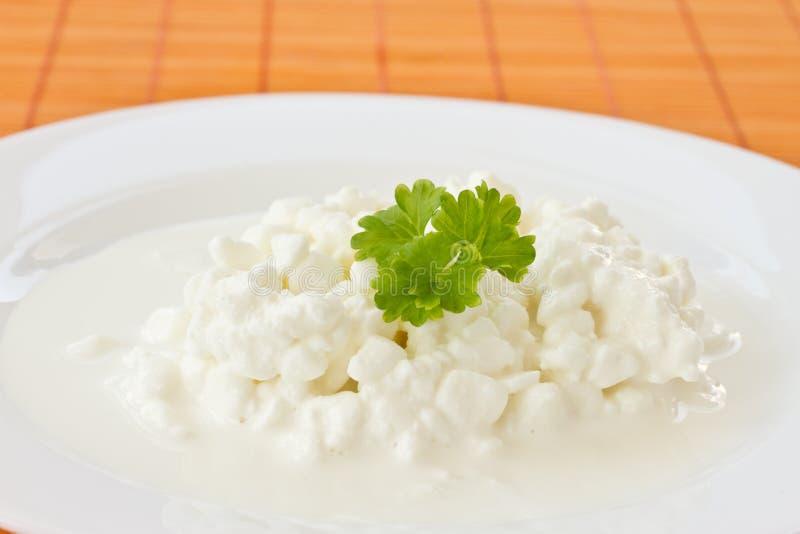 молокозавод коттеджа сыра стоковое фото rf
