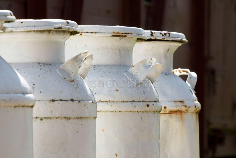 молоко чонсервных банк стоковые фото