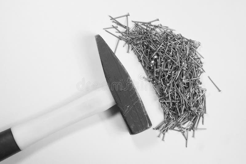 Молоток с ногтями изолированными на белой предпосылке стоковое фото