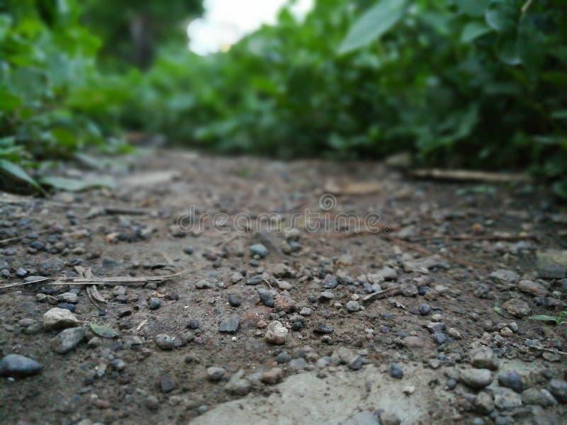 Молчаливый путь стоковое изображение