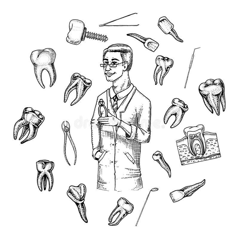 Молярная эмаль зубов, зубоврачебный комплект оборудование аппаратур доктора дантиста ротовая полость чистая или больная здоровье  иллюстрация штока