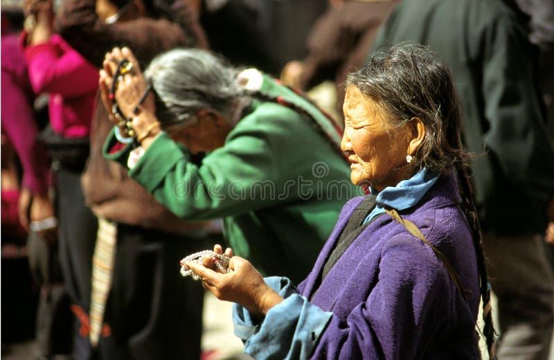 моля женщина Тибета стоковые фотографии rf
