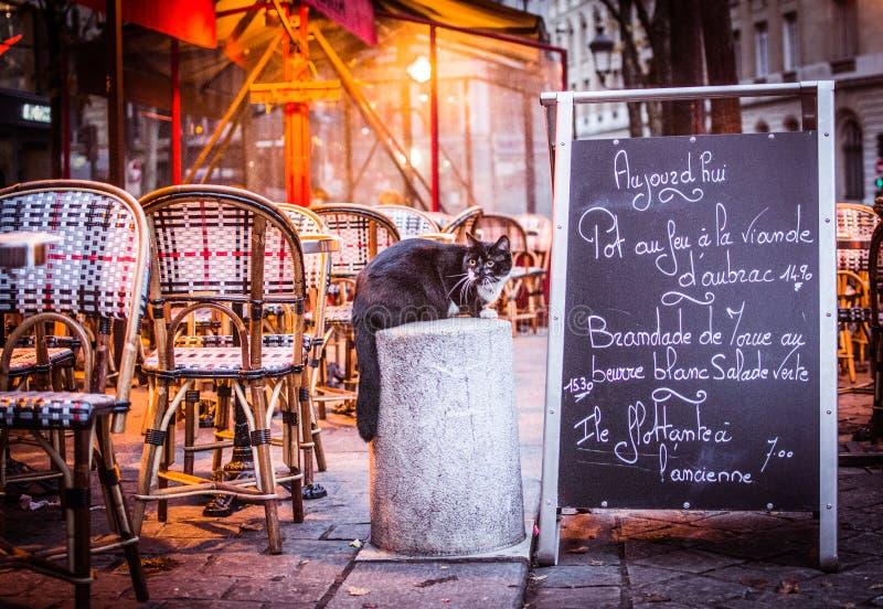 Момент в Париже стоковое фото rf