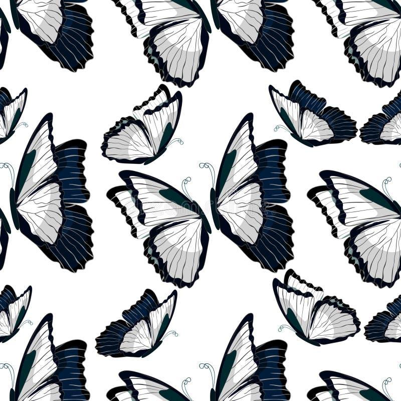 Монарх бабочки безшовного morpho картины butterfliese бесплатная иллюстрация