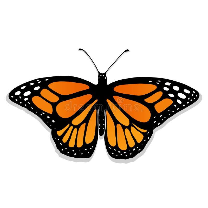 Монарх бабочки вектора реалистический иллюстрация штока