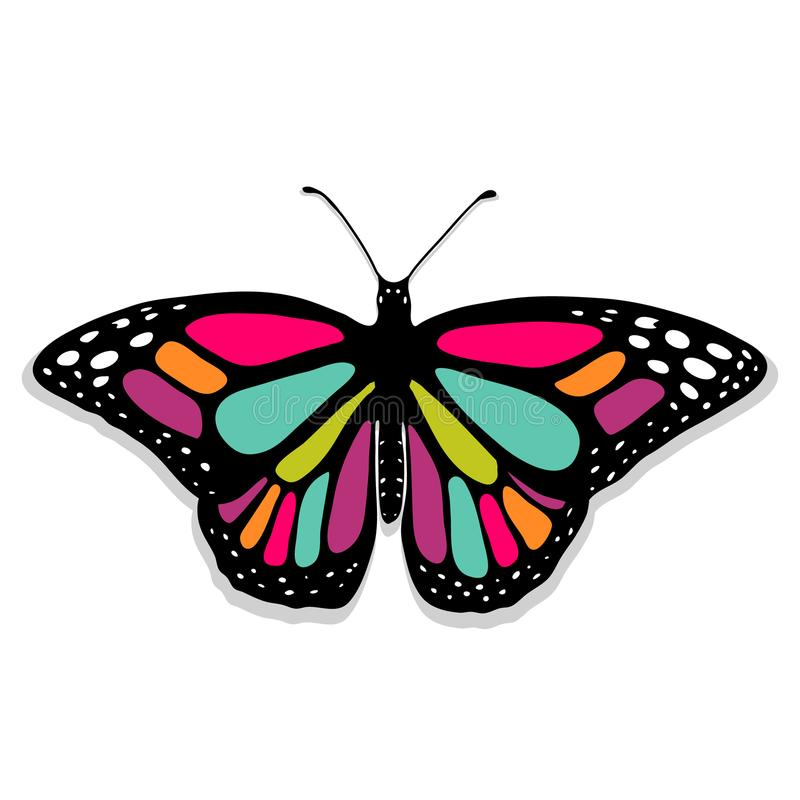 Монарх бабочки вектора реалистический Handdrawn иллюстрация вектора