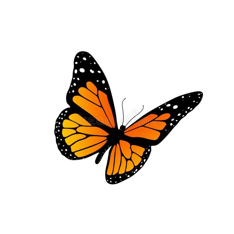 монарх бабочки бесплатная иллюстрация