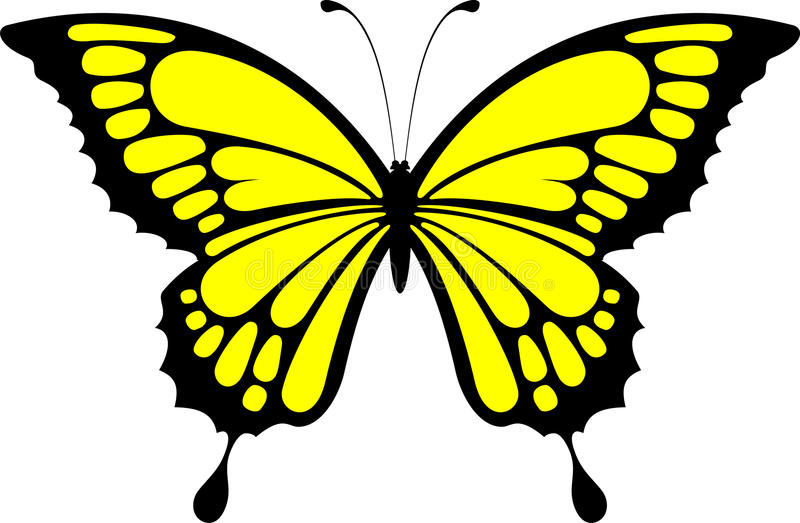 монарх бабочки иллюстрация вектора