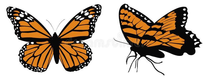 монарх butterflys бесплатная иллюстрация
