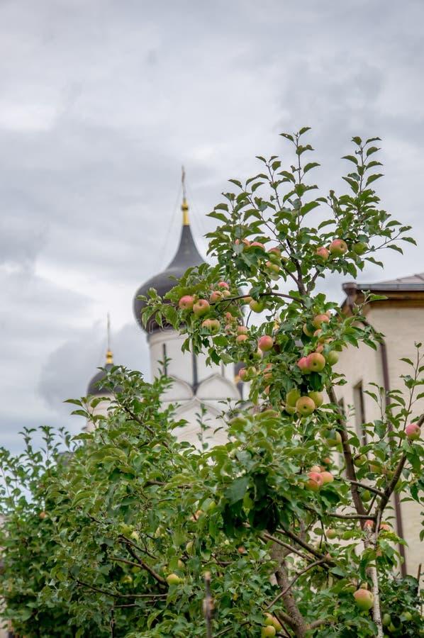 Монастырь в Staritsa стоковая фотография