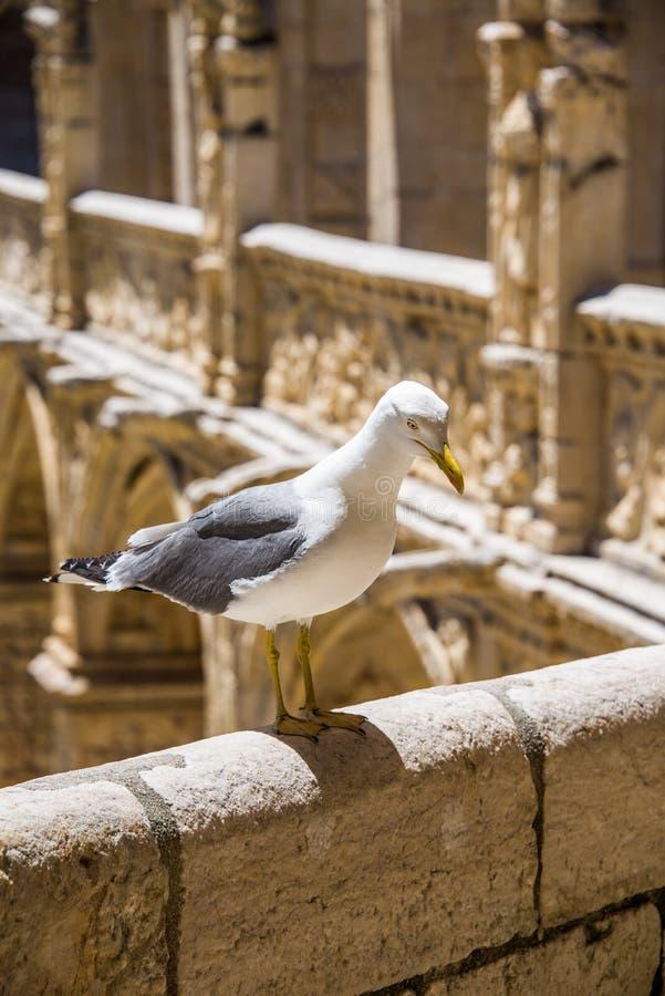 Монастырь Jeronimos в Лиссабоне, Португалии стоковое фото rf