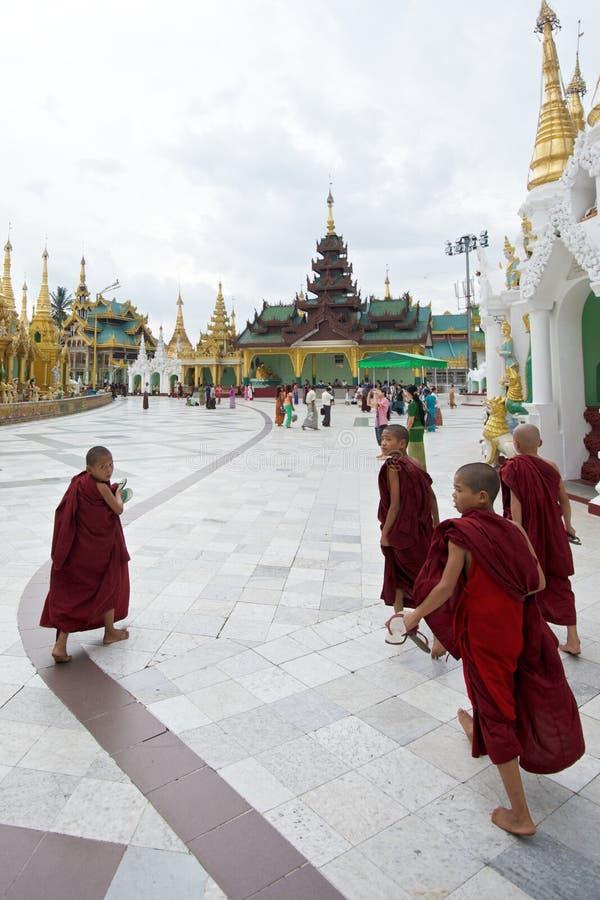 монахи молодые стоковое изображение