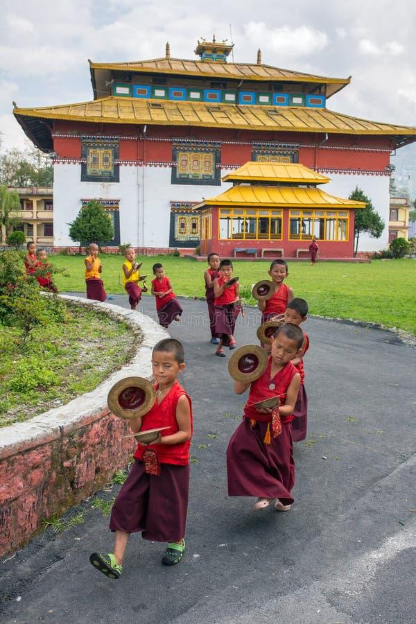 Монахи неопознанного молодого послушника буддийские в традиционных красных робах практикуя в игре тибетской музыки стоковые фото