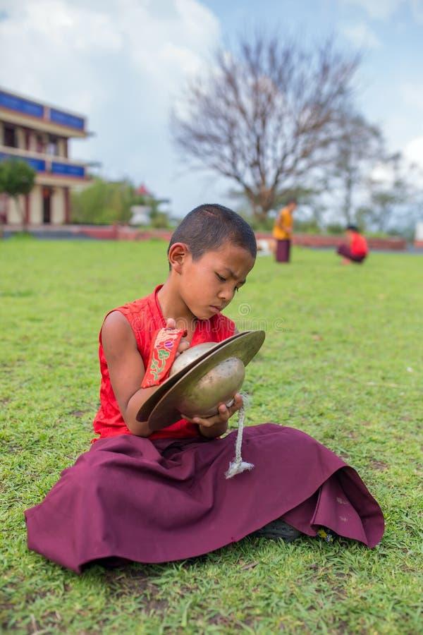 Монах неопознанного молодого послушника буддийский в традиционных красных робах практикуя в игре тибетской аппаратуры музыки стоковое фото rf