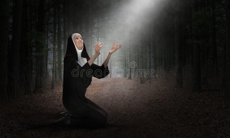 Монашка, молит, молитва, Кристиан, вероисповедание, христианство, религиозное стоковые фотографии rf