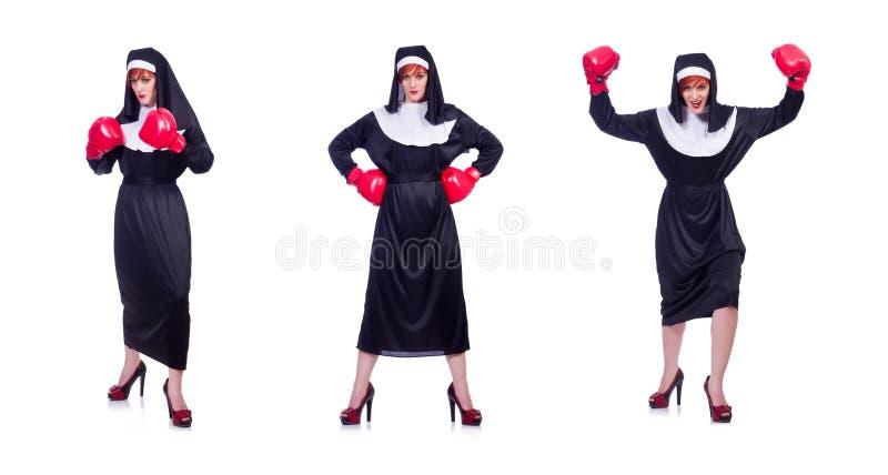 Монашка при перчатки бокса изолированные на белизне стоковые фотографии rf