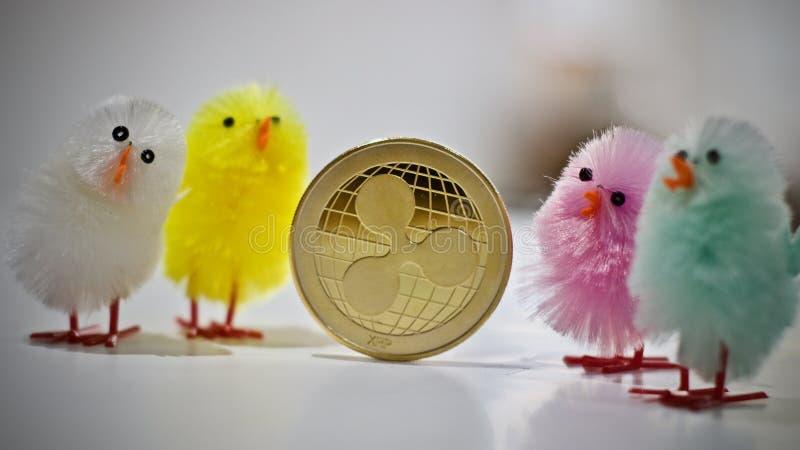 Монетка пульсации пасхи стоковая фотография rf