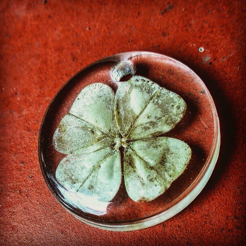 монетка удачливейшая стоковое фото rf