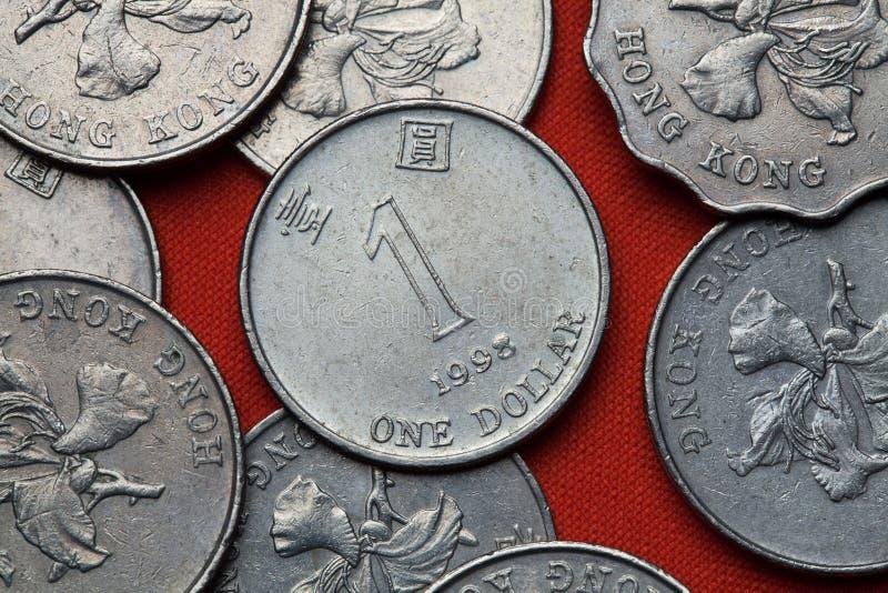 Монетки Гонконга стоковая фотография rf