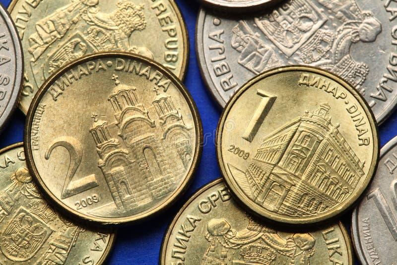 Монетки Сербии стоковое фото