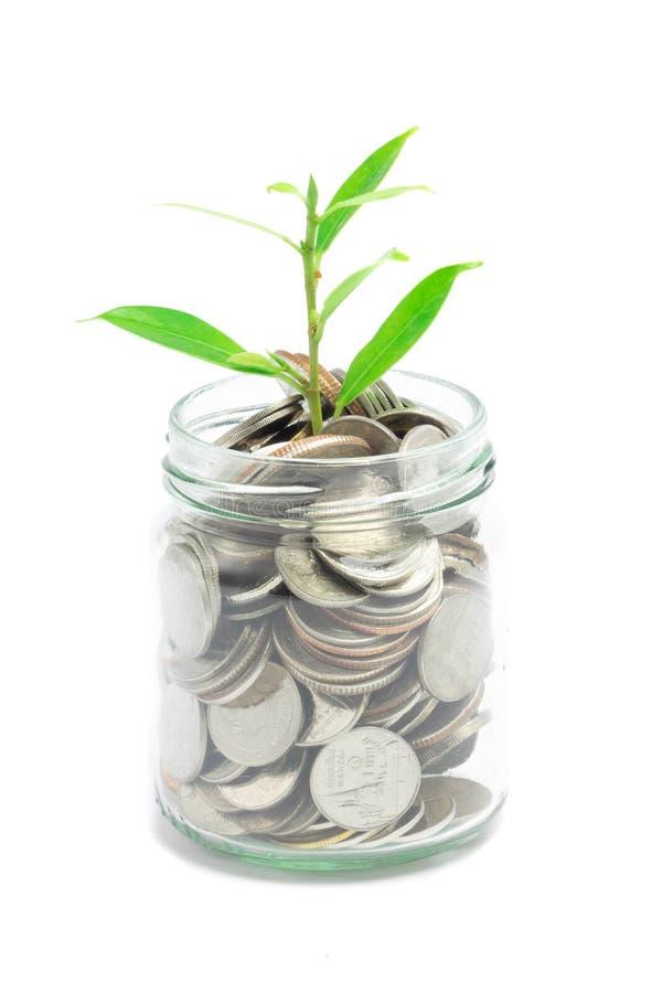Монетки смешивания с семенем в ясной бутылке стоковые фото
