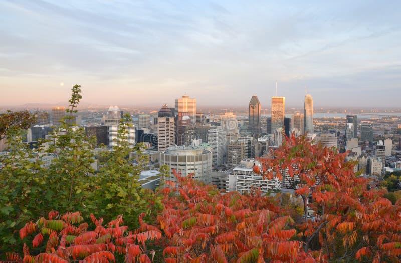 Монреаль городское стоковые изображения