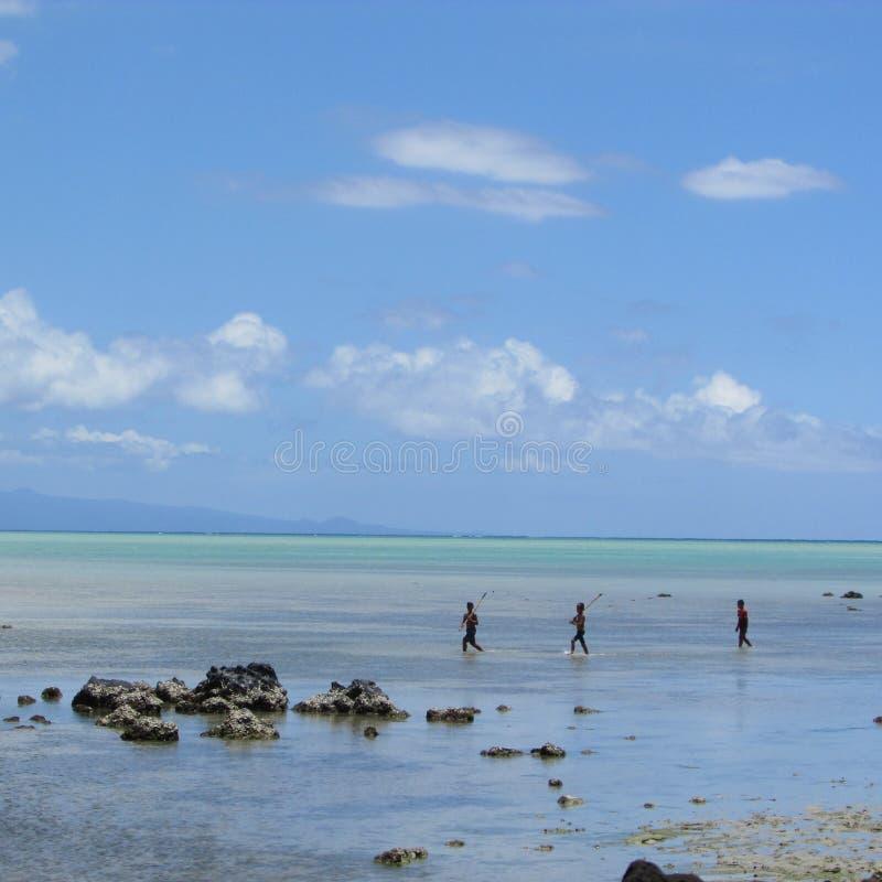 морем в тропическом острове стоковое фото