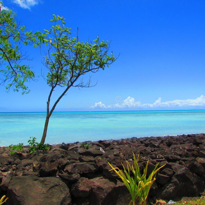 морем в тропическом острове стоковые фото