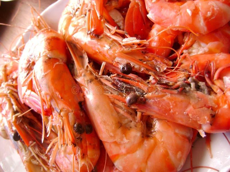 Морепродукты королевской креветки стоковое изображение