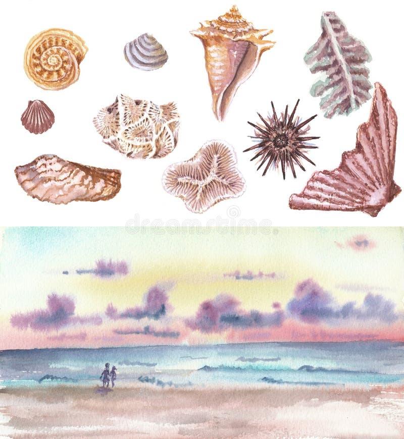 Море акварели установленное с раковинами стоковые изображения rf