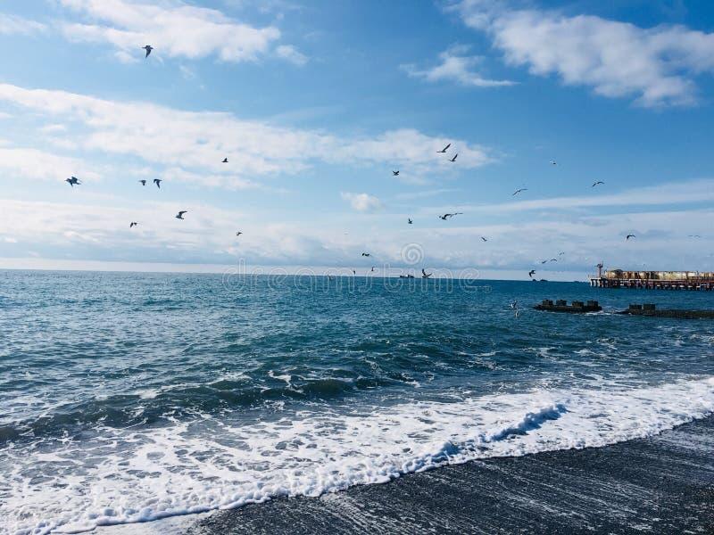Море зимы стоковое изображение rf