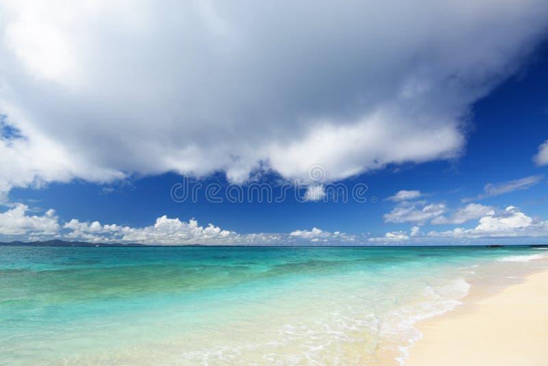 Море изумрудно-зеленого Окинавы. стоковое изображение rf