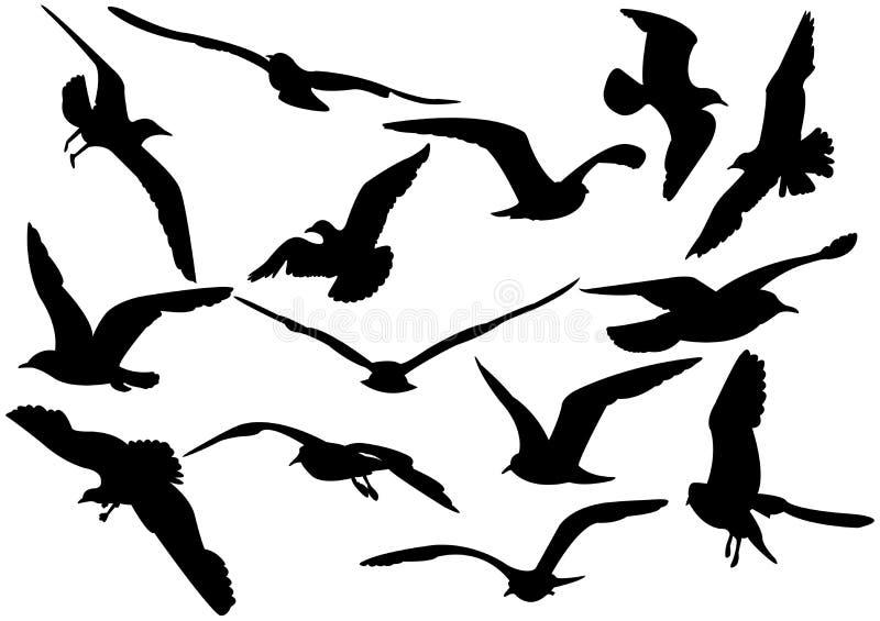 море иллюстрации чаек летания иллюстрация штока