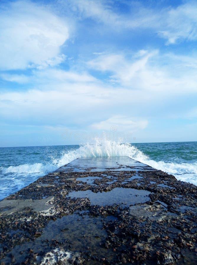 Море и голубое небо стоковые изображения