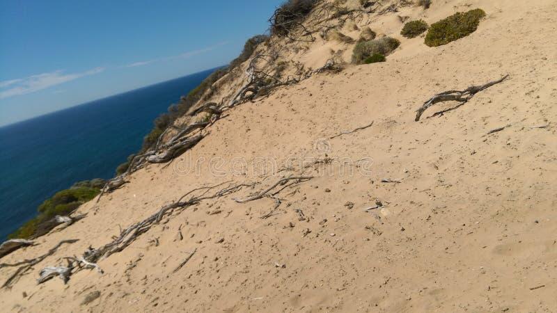 Море и песок стоковое фото rf