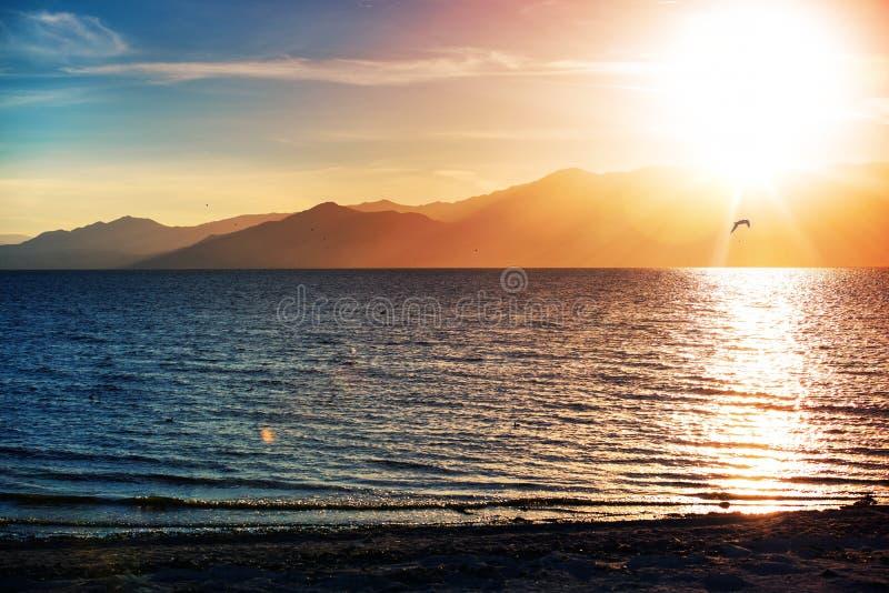 Море Калифорнии Солтона стоковая фотография rf