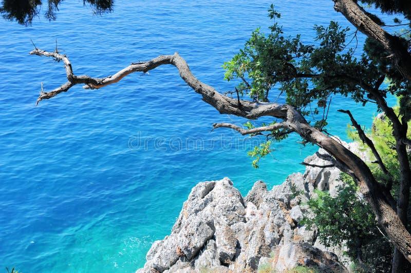 Море, красочный ландшафт - воды Адриатического моря на фоне гор и утесы Черногория, Европа стоковые изображения rf