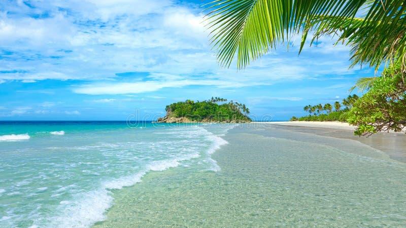 Море, пальмы и песок стоковые фотографии rf