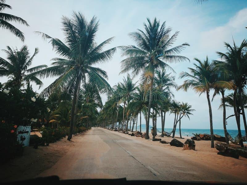 море, песок и солнце стоковое изображение