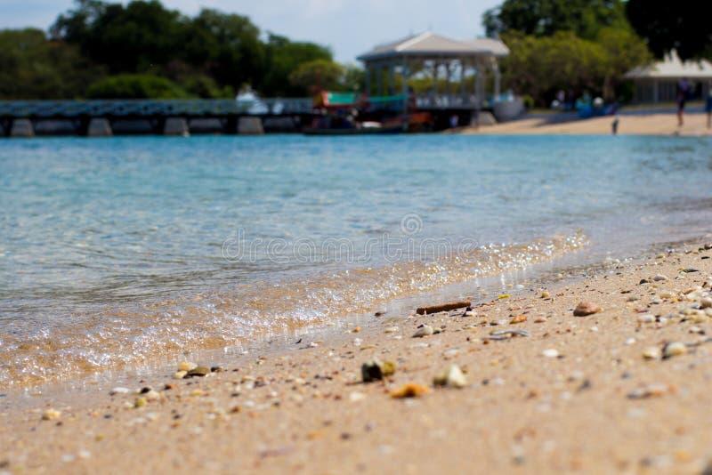 море пляжа тропическое стоковые изображения rf