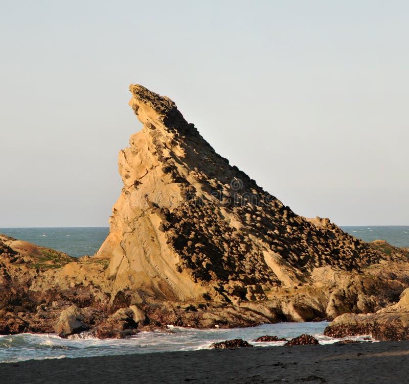 море скалы стоковые фото