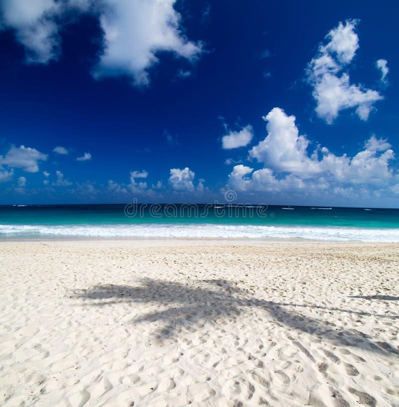 Download Море стоковое фото. изображение насчитывающей карибско - 33729210
