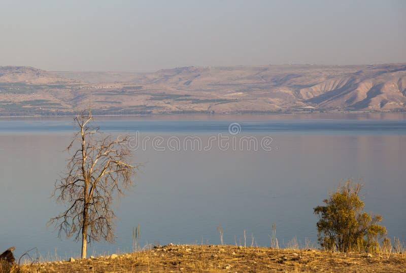 море galilee Понизьте Галилею Израиль стоковая фотография rf
