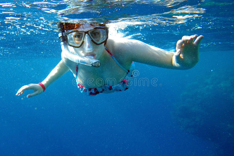 море snorkeling стоковое фото rf